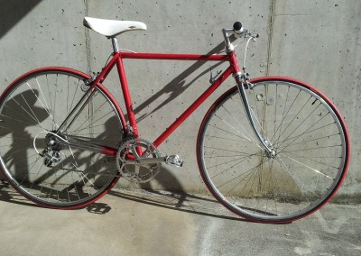 fahrrad_gross