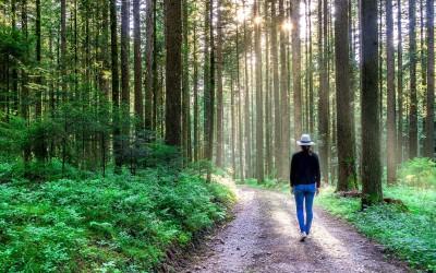Frühlingsbewegung durch einen Achtsamkeitsspaziergang – mentale und körperliche Entrümpelung
